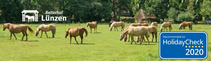Herzlich Willkommen auf der Tier-Fotos.eu-Seite des Reiterhof Lünzen, Ihrem Reit- und Ferienparadies in der Lüneburger Heide