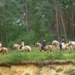reiterhof-luenzen-gruppe-ausritt-wald