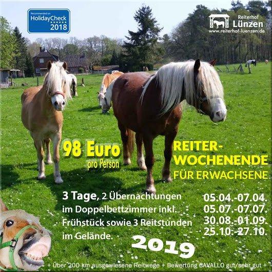 Reiten-Angebot-ReiterWochenende-ReitWochenende-Erwachsene-Reiterhof-Ferienhof-Luenzen-Lueneburger-Heide-Niedersachsen-Cavallo-HolidayCheck-empfohlen-2019