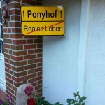 Reiterhof-Luenzen-Juli-2014 (7)